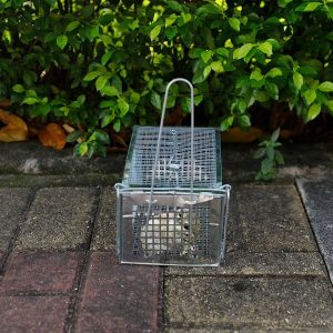 ALLRoad Live Animal Humane Trap Catch Trap Catch Chipmunks, Rats Small Traps Mouse Catch for Indoor and Outdoor