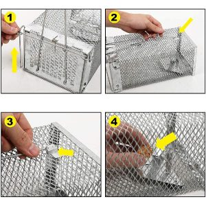 Garsum Animal Humane Live Rat Trap Cage Mouse Trap That for Indoor and Outdoor- Safe Sensitive and Effective