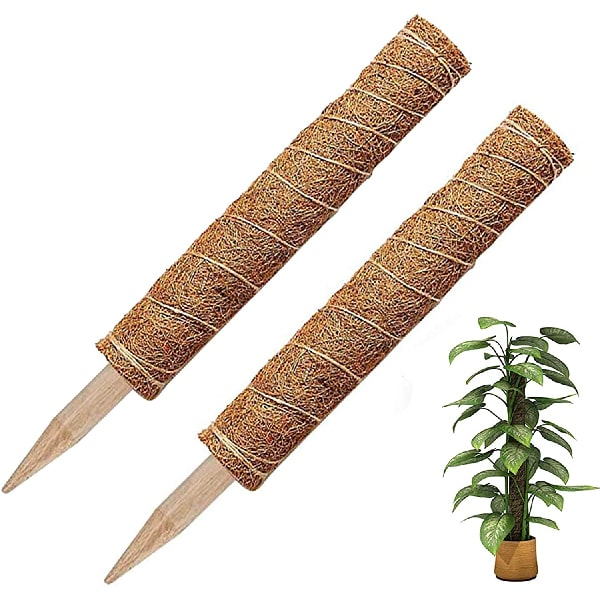 BOTINDO Coir Totem Pole Moss Plant Support, 2PCS 12in Plant Extension Stick with 20pcs Labels for Climbing Indoor Plants for Creepers Vines to Grow Upwards